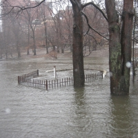 Muddy River rises March 14, 2010