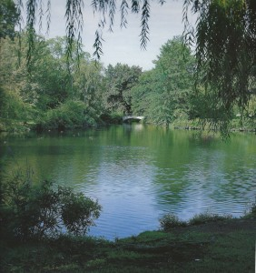 Green_river
