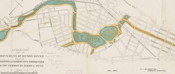 An Update: Next Phase Planned for Muddy River Restoration