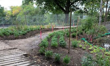 Fall Planting – October 90-Day Look-Ahead